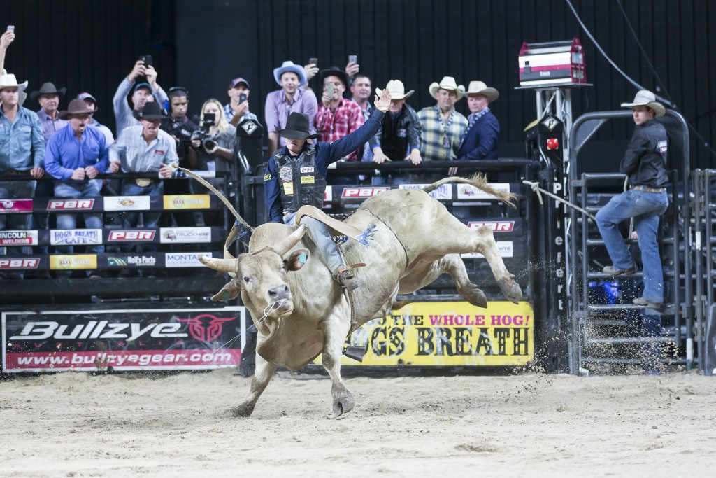 Cody Heffernan on Rollin Deep for 85.5 points in round 2 of the PBR Australian National Finals at the Qantas Credit Union Arena