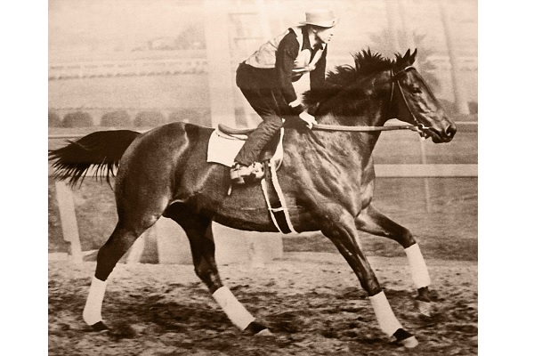 Seabiscuit - wikipedia