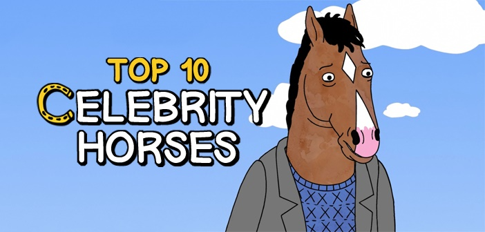celebrity horses feature image